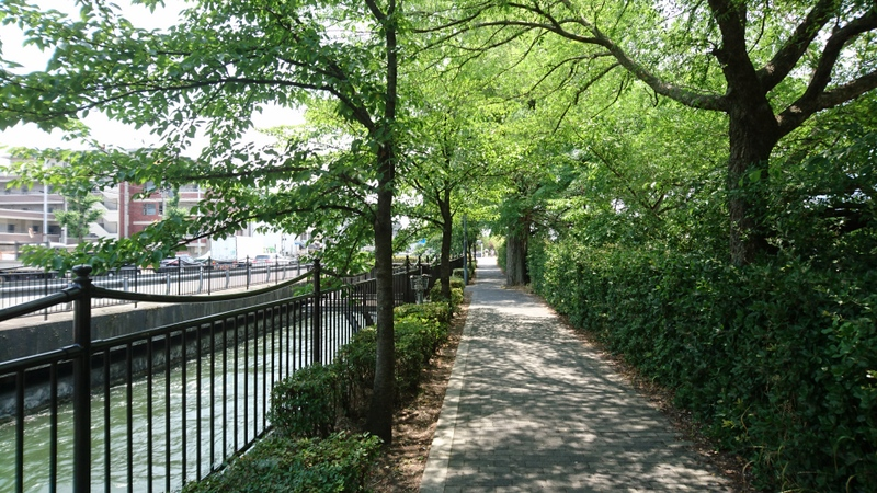 京都市、鴨川近くにて