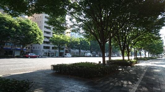 京都市、御池通 朝