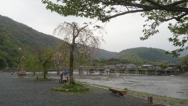 大阪からの帰路、桂川の右岸から上流方向に渡月橋が見えて
