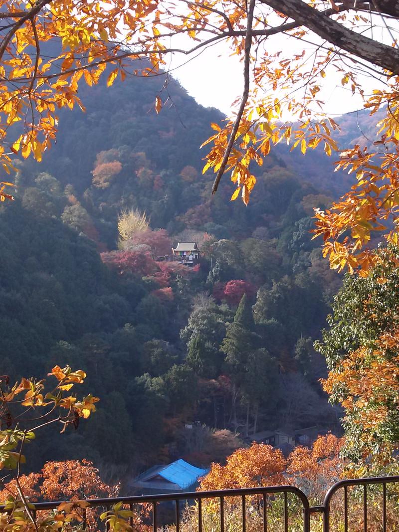 保津川右岸(<br /> 対岸)の山腹に見えるは千光寺