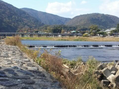 嵯峨嵐山の渡月橋を近くの川下より、昨年11<br /> 月