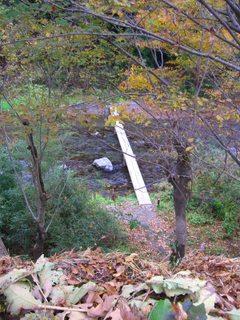 対岸へ架かる一本の木の小橋